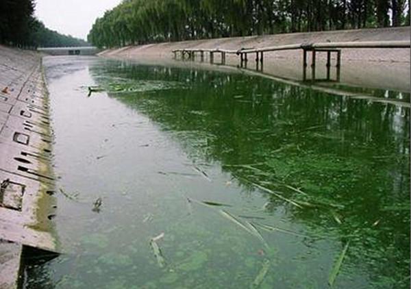 三部委联合发布黑臭水体治理示范城市申报通知