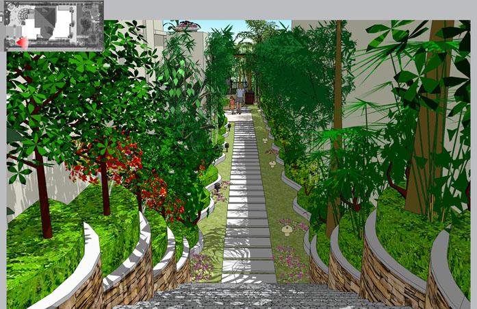 林荫步道透视图